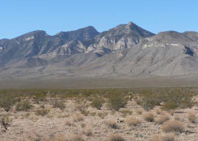 Southern Terminus of Continental Divide Trail and the Big Hatchet Mountains