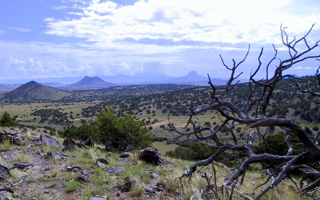 Ignacio Chavez Special Management Area, Mesa Chivato – New Mexico