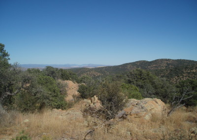 Burro Mountains, Gila National Forest – New Mexico